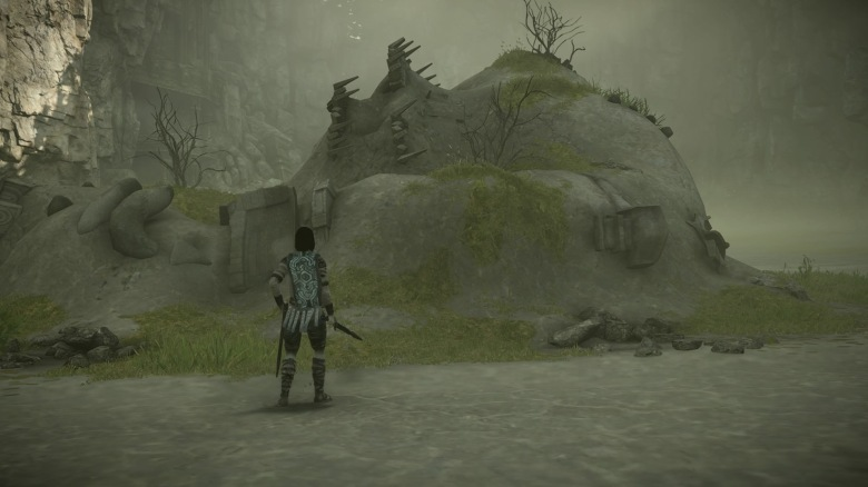 SHADOW OF THE COLOSSUS_20180209045941