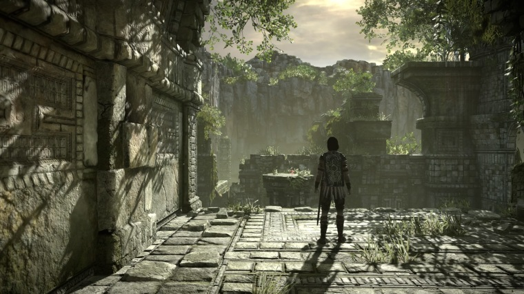 SHADOW OF THE COLOSSUS_20180209075650